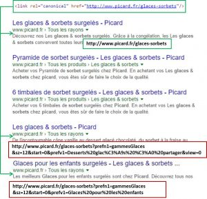 picard-balise-canonical-duplicate