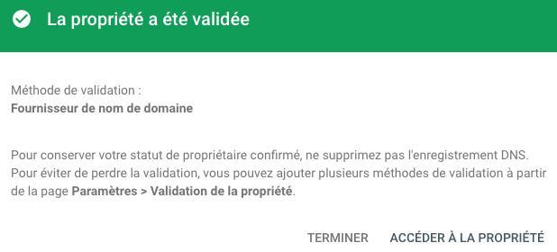 Search console propriété domaine validée